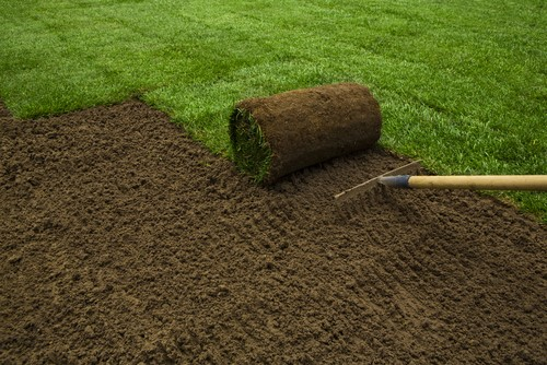 How to Care for a Newly Turved Lawn