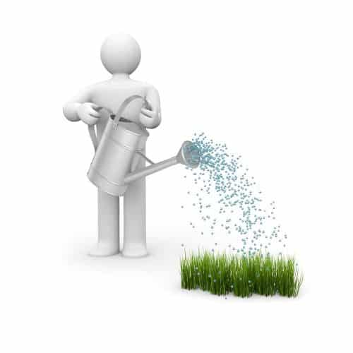 When to apply lawn treatments