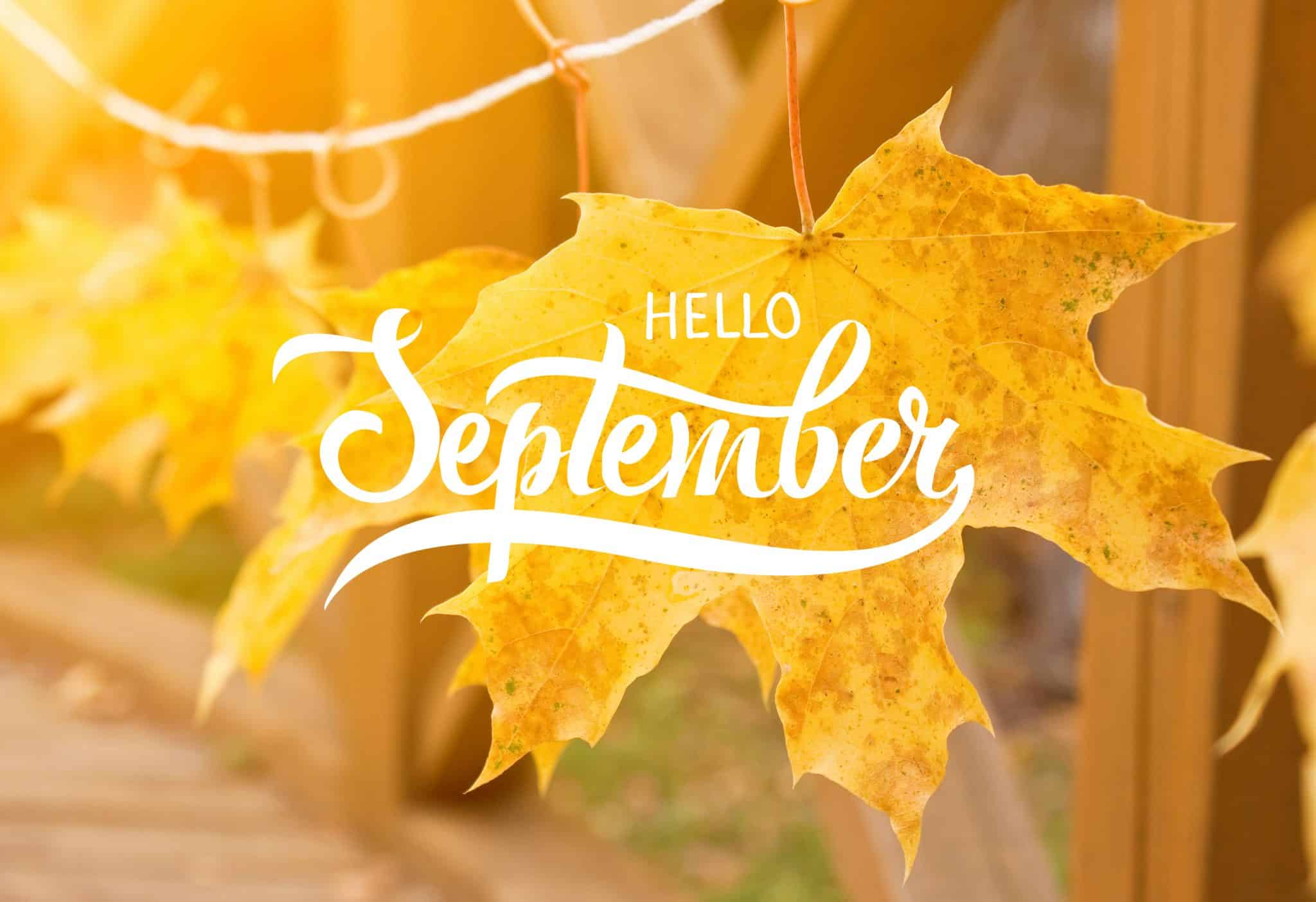 September – Lawn Care Tips
