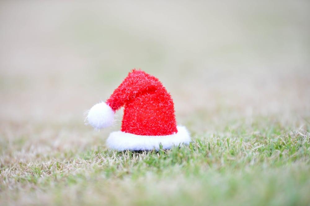 December Lawn Care Advice